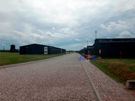 Entradada a Majdanek